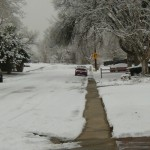 A peaceful Arvada neighborhood on an icy morning. The perfect location for a puffer theft. [Photo by Tommy Trask]