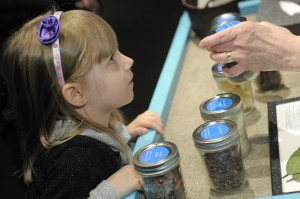 Visitors of all ages can get a closer look at how chocolate is processed into what we see in stores. [Photo: Chris Schneider]